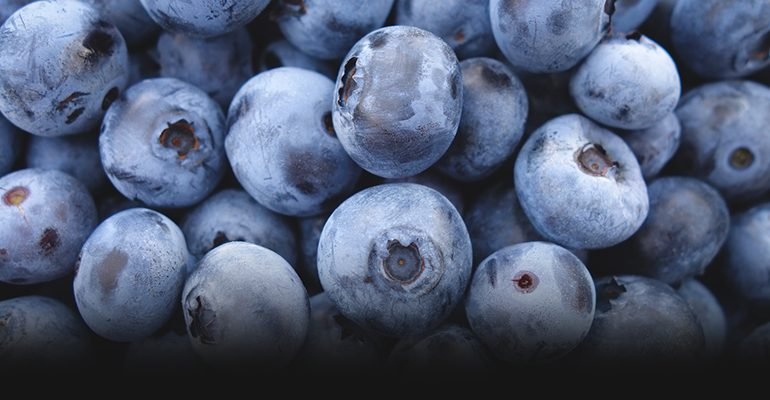 4 FOODS THAT PROMOTE WEIGHT LOSS